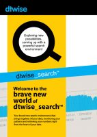 flyer-dtwise-search-1